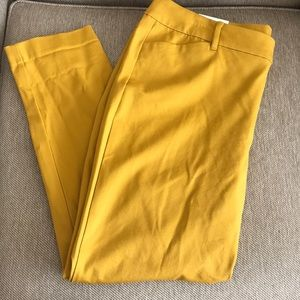 Old navy pants ankle length-Size 16. NWT
